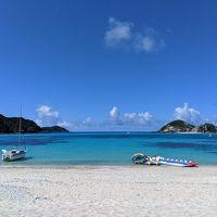 2019家族旅☆夏休み沖縄①渡嘉敷島☆ウミガメを探しに&とかしき祭り