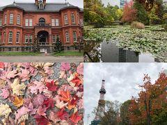 秋の味覚を求めて札幌え