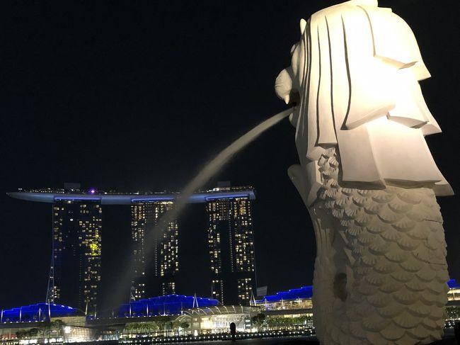 2019.9.12~17  3泊6日の2度目のシンガポール旅行の備忘録です<br />3年前の初シンガポールも一緒だったMちゃんとのおば旅です<br /><br />前回は2泊5日の日程でマリーナ・ベイ・サンズのクラブルームに泊まり、ほとんどの食事はラウンジを利用し、プールなどを楽しみました<br />今回は前回出来なかった観光地を訪れたり、食べられなかったシンガポールグルメを食べたり、加えて前回行った所も深めよう!と思い計画しました<br /><br />5月にJTBダイナミックで予約  <br />シンガポール航空、マンダリンオーチャードホテル3泊で約8万円<br />ダイナミックは初めて利用しましたが、希望の航空便とホテルが選べて、おまけにリーズナブルでした^ ^<br /><br />数年前からMちゃんと共に、細々とJTBたびたびバンクで積立をしていたので今回利用しました<br />積立大事~(^^)