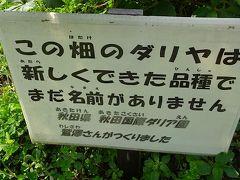 黒川ダリア園