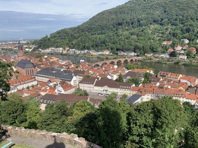 ハイデルベルグにも足を伸ばしました。<br />ここは主人がとても行きたかった場所です。<br />フランクフルトからIC特急で50分。<br />ネッカー川の美しい街で、ドイツ最古の大学があり、美しいお城を中心として、中世の街並みが残っているような<br />おとぎの国のような街でした。<br />学生牢に行ってみましたが、あまりの自由奔放な落書きの部屋に驚きました。<br />ケーブルカーに乗って、山の上から街並み観ることができました。