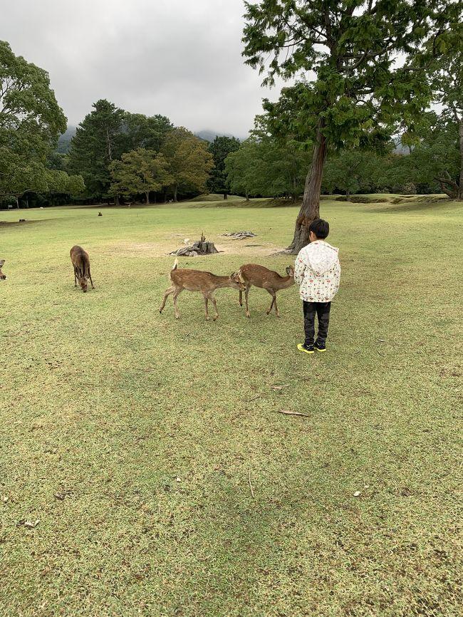 2019年4月、息子が小学生になり我が家の新たな目標が親子で47都道府県制覇!(パパは仕事が忙しいので母子旅がメイン)<br /><br />10月の体育の日の3連休後は母子で奈良へ。<br /><br />息子が通う小学校の校区は2学期制なので、体育の日の三連休プラス火曜日と水曜日が休みで秋休みとなります。<br />本来なら5連休なのですが、娘が通うこども園の運動会が土曜日にあり、天候不良による予備日が日曜日と月曜日。<br /><br />私はこども園の役員もしているので、運動会を休むわけにはいかないので、予備日に運動会がある可能性も考えて車か新幹線で行ける場所としてまだ行った事のない奈良を選びました。<br /><br />さすがに子連れで奈良に2泊はつまらないので、最終日に去年行ってハマってしまったキッザニアをくっつけました。<br /><br />[日程]<br />1日目 奈良公園&amp;ならまち<br />2日目 東大寺&amp;興福寺<br />3日目 キッザニア甲子園<br /><br />[費用] 総合計約¥89,472<br /><br />◆交通費: ¥37,790<br />*新幹線、電車、バス<br /><br />◆宿: ¥15,881<br />*コンフォートホテル奈良 ダブル1泊朝食付き¥6,800<br />*ホテルリッツ甲子園 ダブル1泊朝食付き¥9,081<br /><br />◆観光+お土産: ¥21,706<br />*キッザニア甲子園代 ¥9,882含む<br /><br />◆食事: ¥14,095<br /><br />こちらの旅行記は1日目の奈良公園&amp;ならまち編の旅行記になります。