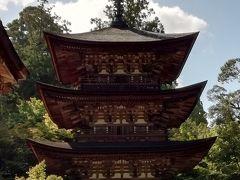 台風19号直後の京都と琵琶湖