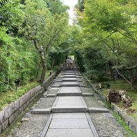京都ぶらり旅〜秋の味覚と2泊3日の極上ステイ(後編)