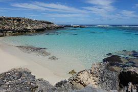 南半球初訪問☆オーストラリアの大自然&もふもふに癒される旅⑦ロットネスト島サイクリング一周