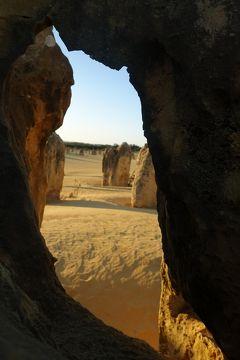 南半球初訪問☆オーストラリアの大自然&もふもふに癒される旅⑨パース街歩きと夕陽のピナクルズ