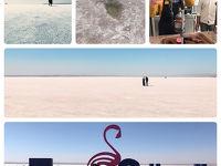 トルコ旅行①★まずはアンカラ空港でレンタカー借りてトウズ湖へ行きました