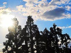 須川高原温泉⇒福島駅 バス車窓風景 東北道(一関IC-福島西IC)☆長者原SAで休憩