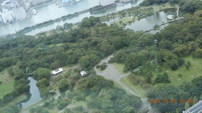 浜離宮恩賜庭園<br /><br /><br />池のある都立庭園。 <br />17世紀に将軍家別邸として始まり、江戸時代の様式で造成。<br />〒104-0046 東京都中央区浜離宮庭園1-1<br />tokyo-park.or.jp<br />03-3541-0200<br />営業:  9時00分~17時00分