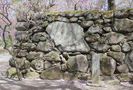 2018春、長野の百名城巡り(6/25):4月16日(6):小諸城(6):野面積の高石垣、八重桜、鏡石