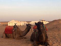 温水シャワー水洗トイレ完備!ビールも冷えてます!砂漠のテントに泊まってみた~モロッコ後編~
