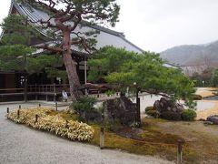 京都の旅 2019   嵯峨野 祇王寺から天龍寺へ