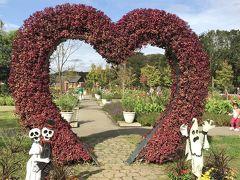 花を求めて⑭ ふなばしアンデルセン公園