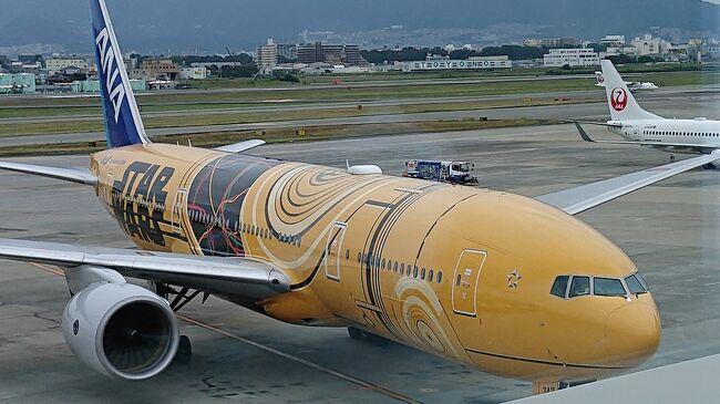 もともと三連休にTDSのハロウィンも楽しむ旅程で計画していたSFC解脱旅でしたが、台風の影響で羽田便が欠航となり、一人で飛行機に乗るだけの旅程となりました。<br />東日本では想像以上の甚大な被害の中ながら…休暇の関係もあり、行くことにしました。<br />僭越ですが、被害に遭われた方々には心よりお見舞い申し上げます。<br /><br />〈後編〉 <br />Flight①長崎→伊丹<br />Flight②伊丹→那覇<br />Flight③那覇→長崎