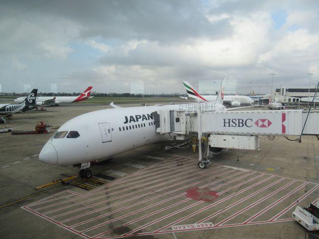 1月に約一週間、南太平洋の島、ニューカレドニアに行きました。年明け早々でしたが向こうは夏、寒い日本を脱出してのリゾート旅行です。<br />メモリアル旅行でした。<br /><br />いよいよ最終日。東京に帰る日です。朝9時のフライトで成田へ帰るだけの最終日です。