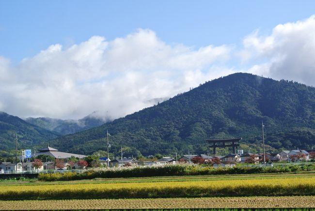 「即位礼正殿の儀の行われる日」の祝日に奈良を訪れました。前日の午後に自宅を車で出発。予定では曽爾高原で夕日に映えるススキを見ようと思っていましたが、大雨の為に断念。翌日の天気が心配でしたが、この日をお祝いするかのように朝には雨も上がり晴れ間が広がりました。清々しい秋の日を感じながら「山の辺の道」の桜井から三輪までを歩いてきました。