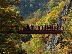 秋、定山渓のもみじ