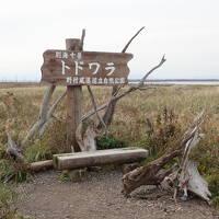 新日本海フェリーで行く北海道 ②野付半島を目指して