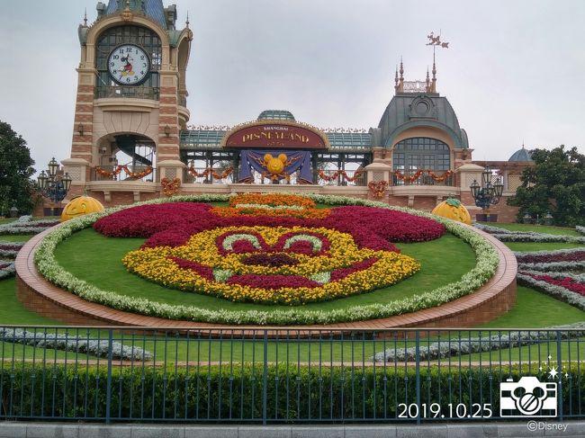 """先月の香港に引き続き、上海ディズニーのハロウィンイベントに参加しました<br /><br />今回は、前回見送った年間パスポートを購入するため、<br />初日は直営ホテル宿泊者の特権""""アーリー・エントリー""""を利用できなかったため、疲労感満載でしたが…<br /><br />翌日は""""アーリー・エントリー""""を使って、サクサク楽しめました<br />""""直営ホテル特権は最強""""ということが実証された旅行でした"""