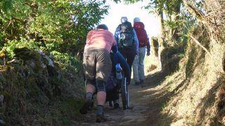 アンダルシアの春祭りから銀の道、そして巡礼の道を歩く 21 14日目 巡礼6日目  Portomarinまで25.1km