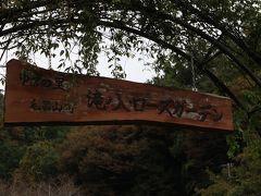 滝ノ入・ローズガーデンへ~秋の薔薇まつり~ 聖天宮・サイボク