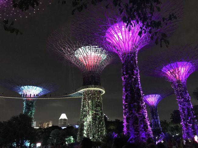 煌めきのシンガポールへ~母娘旅も第3弾になりました!