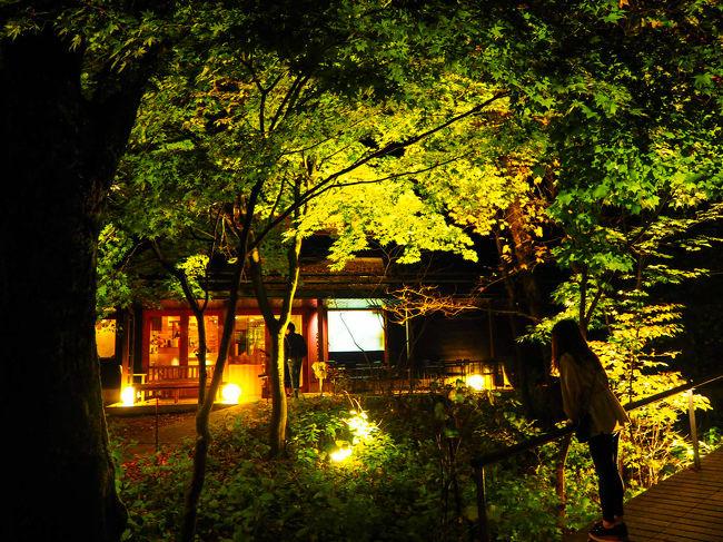 今回の旅先は軽井沢。<br /><br />軽井沢といえば避暑地として有名ですが、<br />秋の軽井沢もとても綺麗みたいなので、<br />女2人で楽しんで来たいと思います。