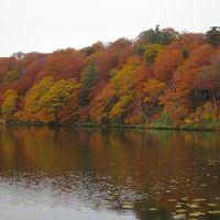 東北・りんごと紅葉と温泉巡り(3日目)