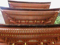 2018春、関西の花のお寺巡り(16/16):4月10日(16):浄瑠璃寺(2:完):浄土庭園、国宝本堂、国宝三重塔