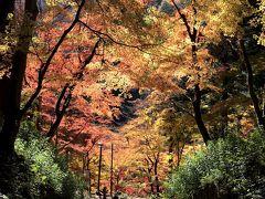 紅葉の香嵐渓と小原四季桜まつり ①