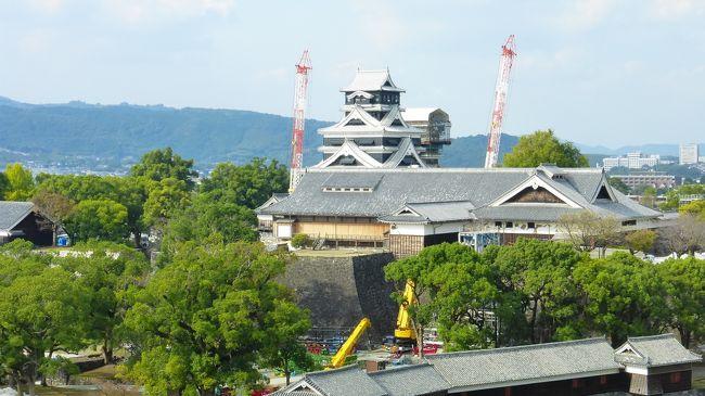 7月にも熊本市に行って来たばかりですが、桜町の熊本交通センター跡地に、大規模商業施設(SAKURA MACHI Kumamoto)が9月14日にオープンし、そこに新ホテル(ホテルトラスティプレミア熊本)が10月9日に開業したので、その大規模商業施設散策と新ホテル宿泊目的メインで、再度熊本市に行って来ました。<br /><br />SAKURA MACHI Kumamoto公式サイト:https://sakuramachi-kumamoto.jp/<br /><br />ホテルトラスティ プレミア 熊本公式サイト:https://trusty.jp/kumamoto/<br /><br /><br />今回の日程行程は下記の通りです。<br /><br />10月27日(日)<br /><br />博多 11:41-新幹線つばめ321号(800系)-熊本 12:30<br /><br />800系新幹線公式サイト:https://www.jrkyushu.co.jp/trains/800/<br /><br />・桜の馬場 城彩苑<br />・熊本城二の丸広場<br />・熊本市役所14F展望ロビー<br />・繁華街散策<br />・SAKURA MACHI Kumamoto内&屋上庭園散策<br /><br />ホテルトラスティ プレミア 熊本 泊<br /><br />スタンダードダブルルーム(約17平米) 9,900円<br /><br />開業記念料金 ハイフロア(9~13F指定) ビュッフェ朝食無料<br /><br /><br />10月28日(月)<br /><br />・水前寺成趣園<br /><br />熊本 13:35-新幹線さくら556号-博多(N700系) 14:13<br /><br />N700系新幹線公式サイト:https://www.jrkyushu.co.jp/trains/700/<br /><br /><br /><br />熊本市役所14F展望ロビーから熊本城などを見た時の様子です。<br />