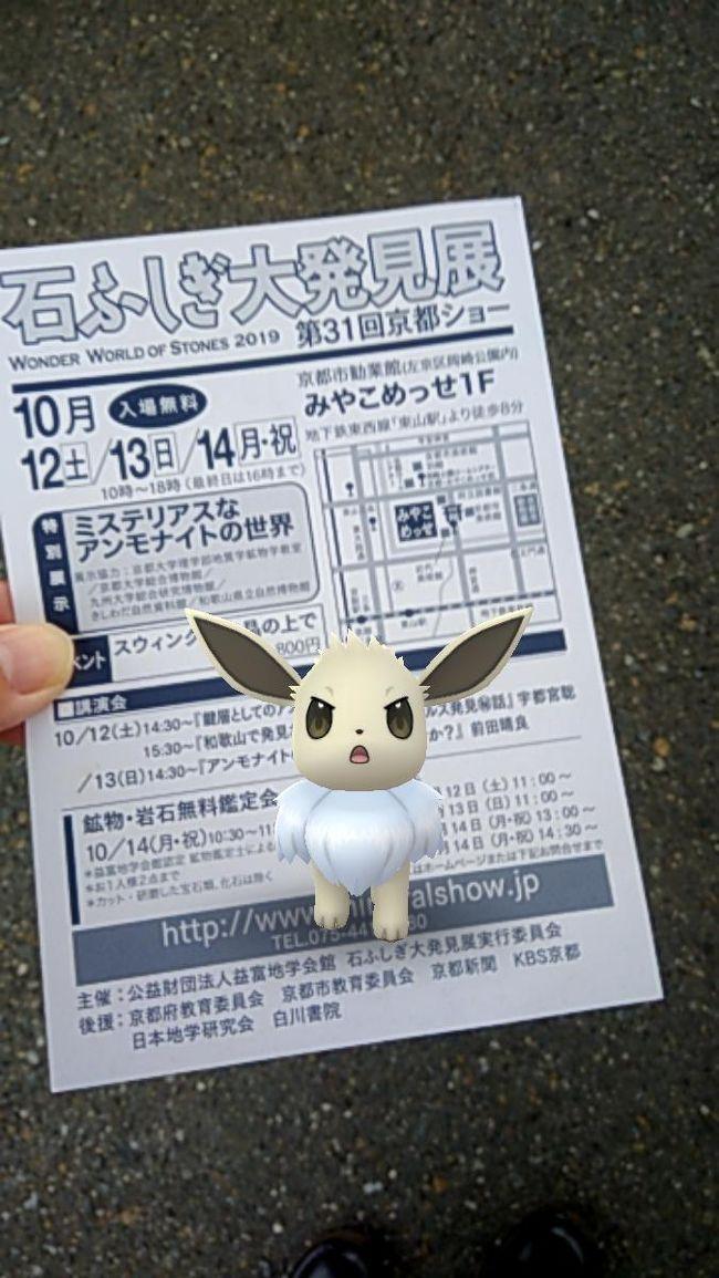 10月半ば、京都へイベント巡りに出かけました。<br />当初は京都市内のみの予定でしたが、当日お隣滋賀県で大津祭開催だったため最後に大津市まで足を伸ばした一日の記録。<br />日帰り旅行、移動は主に電車です。<br /><br />(表紙写真はイベント巡りのきっかけになったミネラルショーお知らせのはがき、と記念撮影したポケモンGOイーブイ)