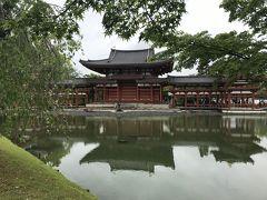 関西周遊紀行、平等院と街のかたすみの牧場(4日目)