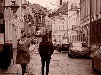 秋のバルト三国 ひとり旅 【5】ヴィリニュスの教会巡りとヴィリニュス大学編