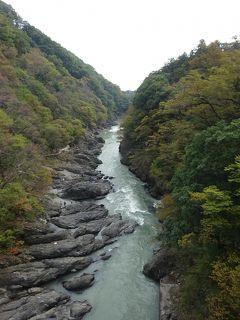 又、又、バスツアー 紅葉を見に行ったけれどまだでした~(>_<) 高津戸峡 渡良瀬鉄道 草木湖 宝徳寺 出流原弁天池