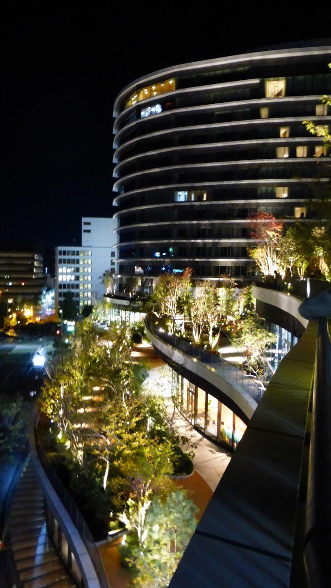 7月にも熊本市に行って来たばかりですが、桜町の熊本交通センター跡地に、大規模商業施設(SAKURA MACHI Kumamoto)が9月14日にオープンし、そこに新ホテル(ホテルトラスティプレミア熊本)が10月9日に開業したので、その大規模商業施設散策と新ホテル宿泊目的メインで、再度熊本市に行って来ました。<br /><br />SAKURA MACHI Kumamoto公式サイト:https://sakuramachi-kumamoto.jp/<br /><br />ホテルトラスティ プレミア 熊本公式サイト:https://trusty.jp/kumamoto/<br /><br /><br />今回の日程行程は下記の通りです。<br /><br />10月27日(日)<br /><br />博多 11:41-新幹線つばめ321号(800系)-熊本 12:30<br /><br />800系新幹線公式サイト:https://www.jrkyushu.co.jp/trains/800/<br /><br />・桜の馬場 城彩苑<br />・熊本城二の丸広場<br />・熊本市役所14F展望ロビー<br />・繁華街散策<br />・SAKURA MACHI Kumamoto内&屋上庭園散策<br /><br />ホテルトラスティ プレミア 熊本 泊<br /><br />スタンダードダブルルーム(約17平米) 9,900円<br /><br />開業記念料金 ハイフロア(9~13F指定) ビュッフェ朝食無料<br /><br /><br />10月28日(月)<br /><br />・水前寺成趣園<br /><br />熊本 13:35-新幹線さくら556号-博多(N700系) 14:13<br /><br />N700系新幹線公式サイト:https://www.jrkyushu.co.jp/trains/700/<br /><br /><br /><br />夜のSAKURA MACHI Kumamoto屋上庭園などを散策した時の様子です。<br /><br />コメントは、一部を除いて省略させて頂きます。