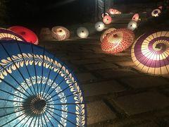 和傘の灯り