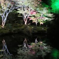 秋の蔵王と松島紅葉ライトアップ