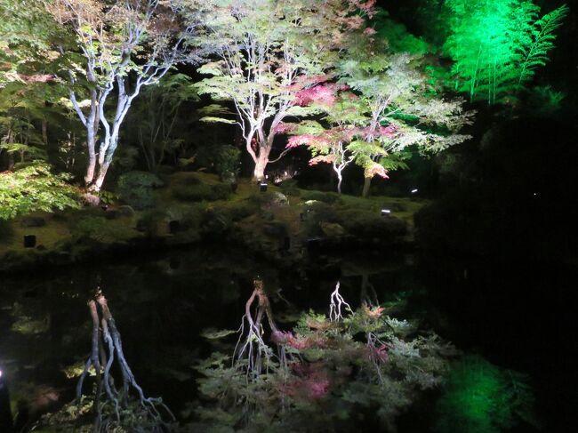 11月の3連休を使って、福島・山形・宮城の3県を観光しました。<br /><br />この日は紅葉の蔵王を見たあと、松島の円通院ライトアップへ。<br />蔵王は少し遅れ気味の紅葉が綺麗に見えた反面、御釜のある山頂では木々も凍っていて温度計は氷点下を記録していました。<br /><br />途中、震災の復興過程にある街並みなども見学でき、有意義な1日でした。