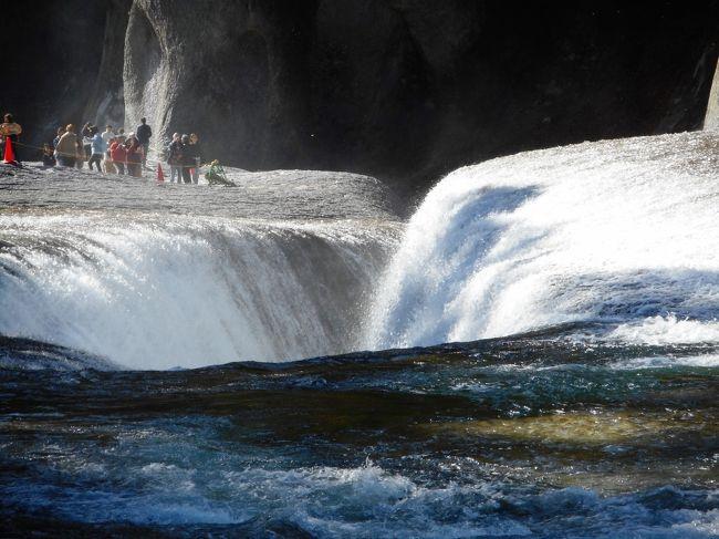 山と渓谷のくに、群馬。上越線通る巨大河岸段丘の街、沼田から、尾瀬片品へむかう途中に、「群馬のナイアガラ」があるという。<br /> その「ナイアガラ」こそ、片品川にある寄瀑、「吹割の滝」。NHK大河ドラマ「葵」のOPでしょっぱなに映像に現れる、あの滝だ。<br /> あの大地を割るような奇景を、紅葉の時期にぜひとも見たいと思い、3連休中の最終日に、沼田で列車を降りて、あとはバスで1時間揺られ、その滝をしかと見てきました。<br /> 写真ではスケールがよく分からなかったあの奇抜な滝、予想以上に大きく、水量多く、むしろ恐怖を感じる滝であった。<br /> 老神の先、結構奥まったところにあるが、まさに一見の価値あり。一言、凄い。<br /> 紅葉もちょうど見ごろになりだした時期にあたった。錦秋の渓谷に凄まじく響きながら流れる轟流。<br /> その滝を見ただけで、この日は充分満足、その滝だけ見て帰ってきたが、実に得るもの大きかった1日だった。<br /> その凄さは写真では分からないと思いますが、とりあえずご覧ください。