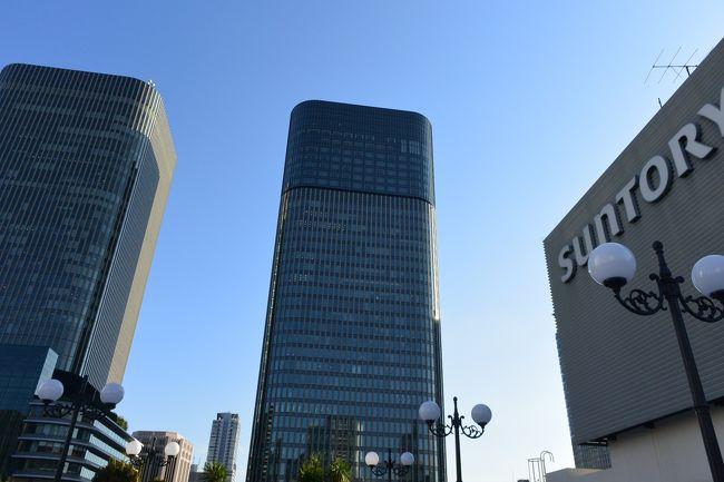 2019年度の大阪・生きた建築フェスティバルに行ってきました。<br /><br />最近は1960年代や70年代のビルや、建てられたばかりの<br /><br />最新のビルなども参加するようになって、バリエーションに富んで<br /><br />きました。今年は大阪市の地下50メートルの下水道設備見学といったもの<br /><br />までありました。<br /><br />オペラドメーヌという現在は結婚式場になっている辰野金吾の赤レンガの<br /><br />建物は土日に行われるイケフェスでは見ることはできないだろうと<br /><br />思っていたのが、プレイベントとして木曜日に見学会があったり<br /><br />(結局急用ができて行けませんでしたが・・涙)見学できる建物も<br /><br />ずいぶん増えてきました。