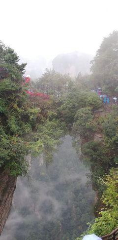 ANAマイルで行く張家界・武陵源、北京10日間 その3(武陵源観光1)