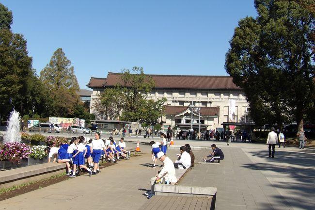ようやく秋晴れが続くようになって上野公園(https://4travel.jp/travelogue/11555217)にも人出が戻ってきた。しかし、公園内の木々はまだ紅葉前だ。<br /> やはり修学旅行の学生が多く見受けられるが、制服組ばかりではなく、体操着姿のグループもいる。電車に乗らなくても来れる地元の中学生だろう。<br />(表紙写真は体操着姿のグループ)