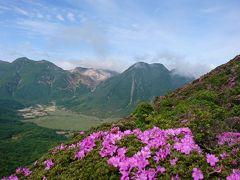 山旅 九重連山 ミヤマキリシマを訪ねて