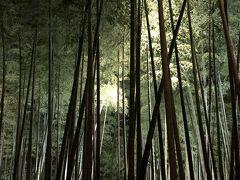 京都紅葉直前!観光、美味しい物を満喫してきました。中編。