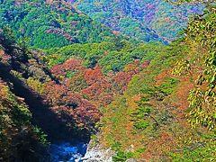 龍王峡-4 鬼怒川左岸/自然研究路 青竜峡―紫竜峡で ☆大観・五光岩・兎はね・かめ穴