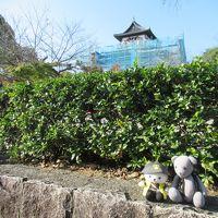 01萩にゃん、犬山城に登城する(女子?旅その1)