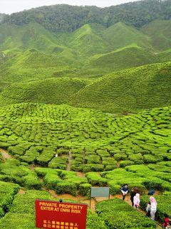 アジアとヨーロッパを結ぶ交差点マレーシア キャメロンハイランドで紅茶をいただく