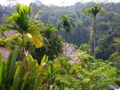 バリ島で非日常空間に癒される3日目ティルタエンプル寺院・ウブド観光