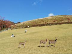 2019秋 奈良公園と若草山を散歩